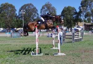 Jake and King 1.45m